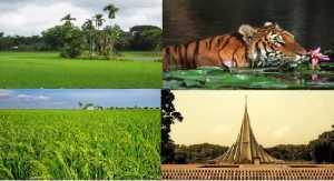 """<img src=""""Bangladesh-Foreign-Company-Registration-Formation.jpg"""" alt=""""Bangladesh Foreign Company Registration-Formation or incorporation"""">"""