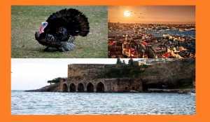 "<img src=""Turkey.jpg"" alt=""Turkey Foreign Company Registration-Incorporation"">"