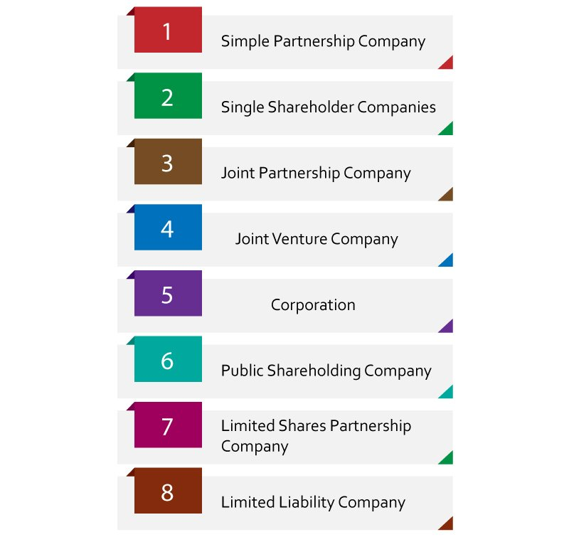 Types of company structures in Qatar