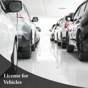 Business Permits for Vehicles