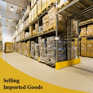 license for selling imported good in Online