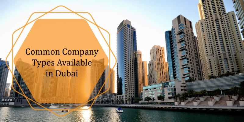Common types of company in Dubai