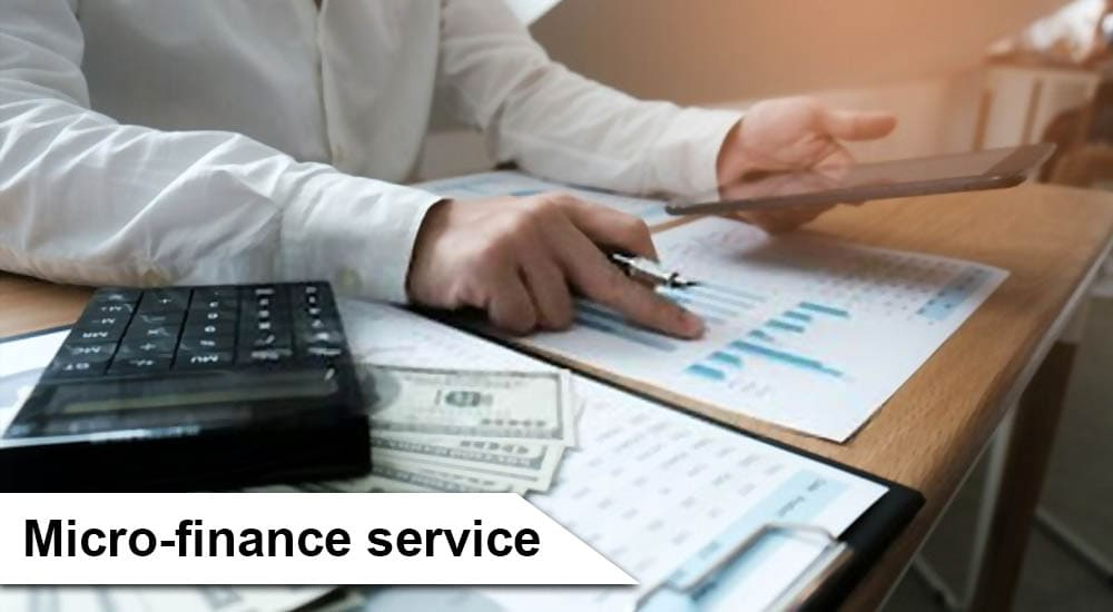 Micro-finance service in Malaysia