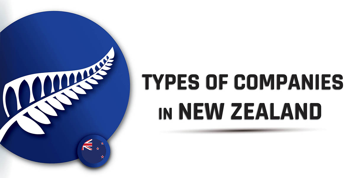 Types of Companies in New Zealand